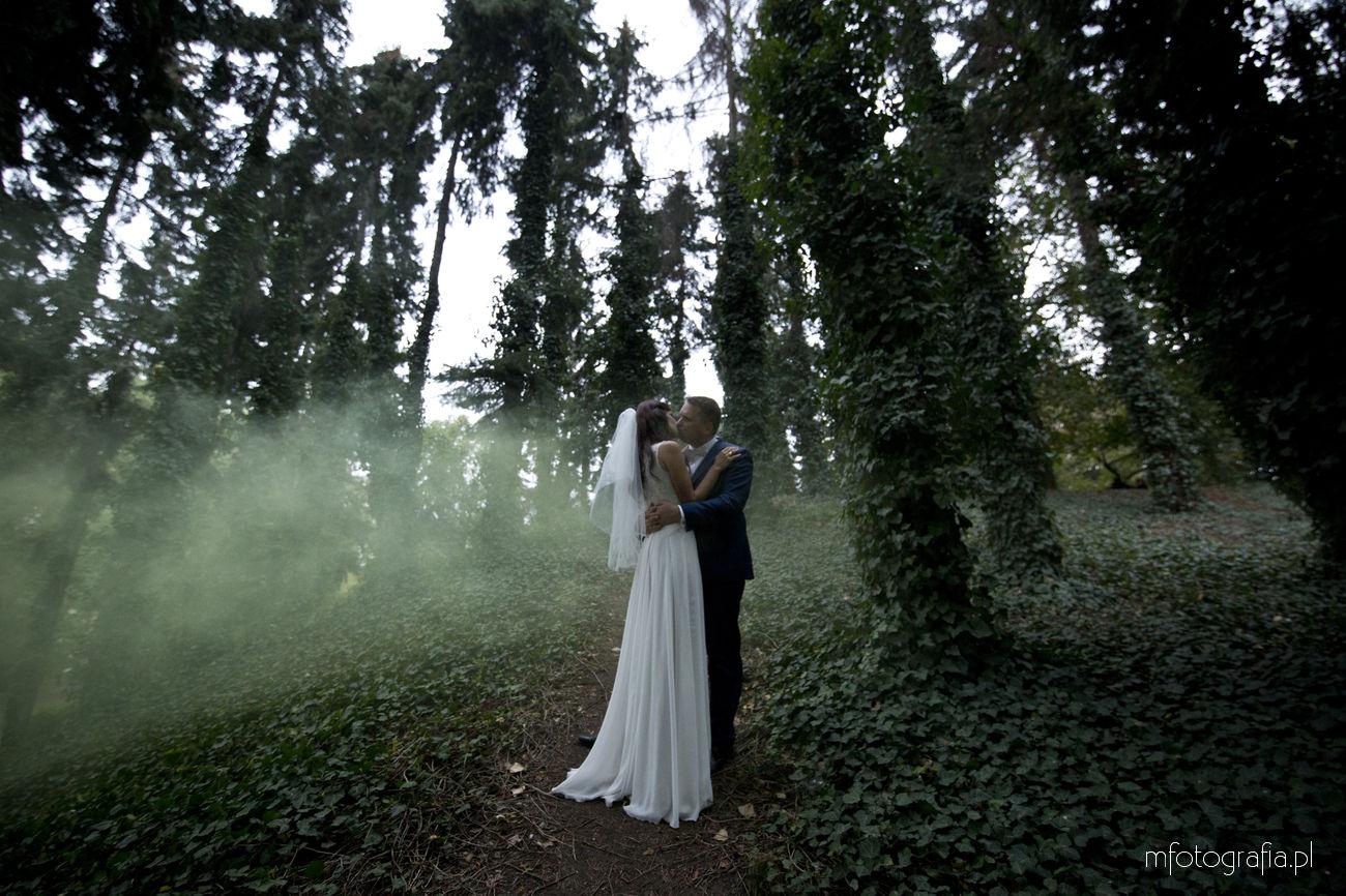 plener-slubny-warszawa-mgła