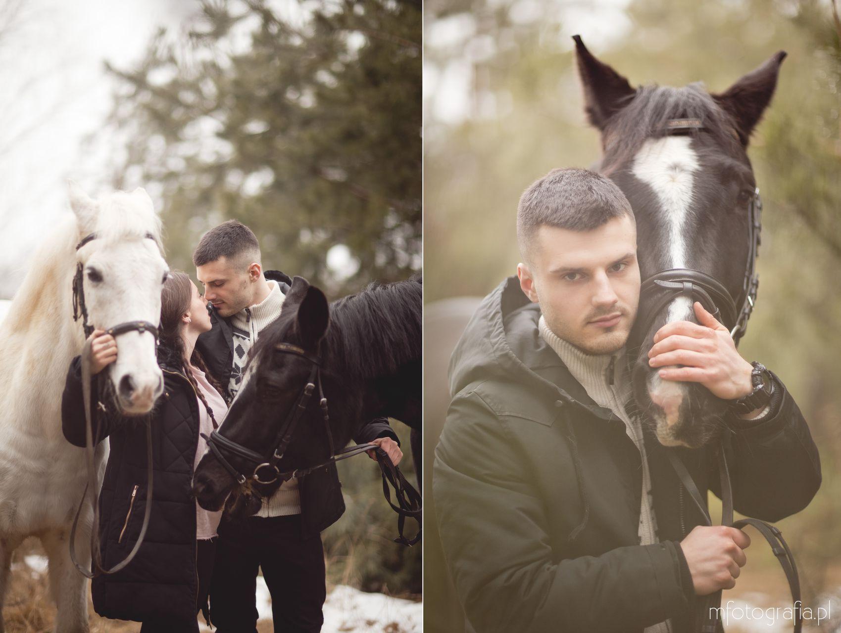 zimowa sesja zakochanych z końmi