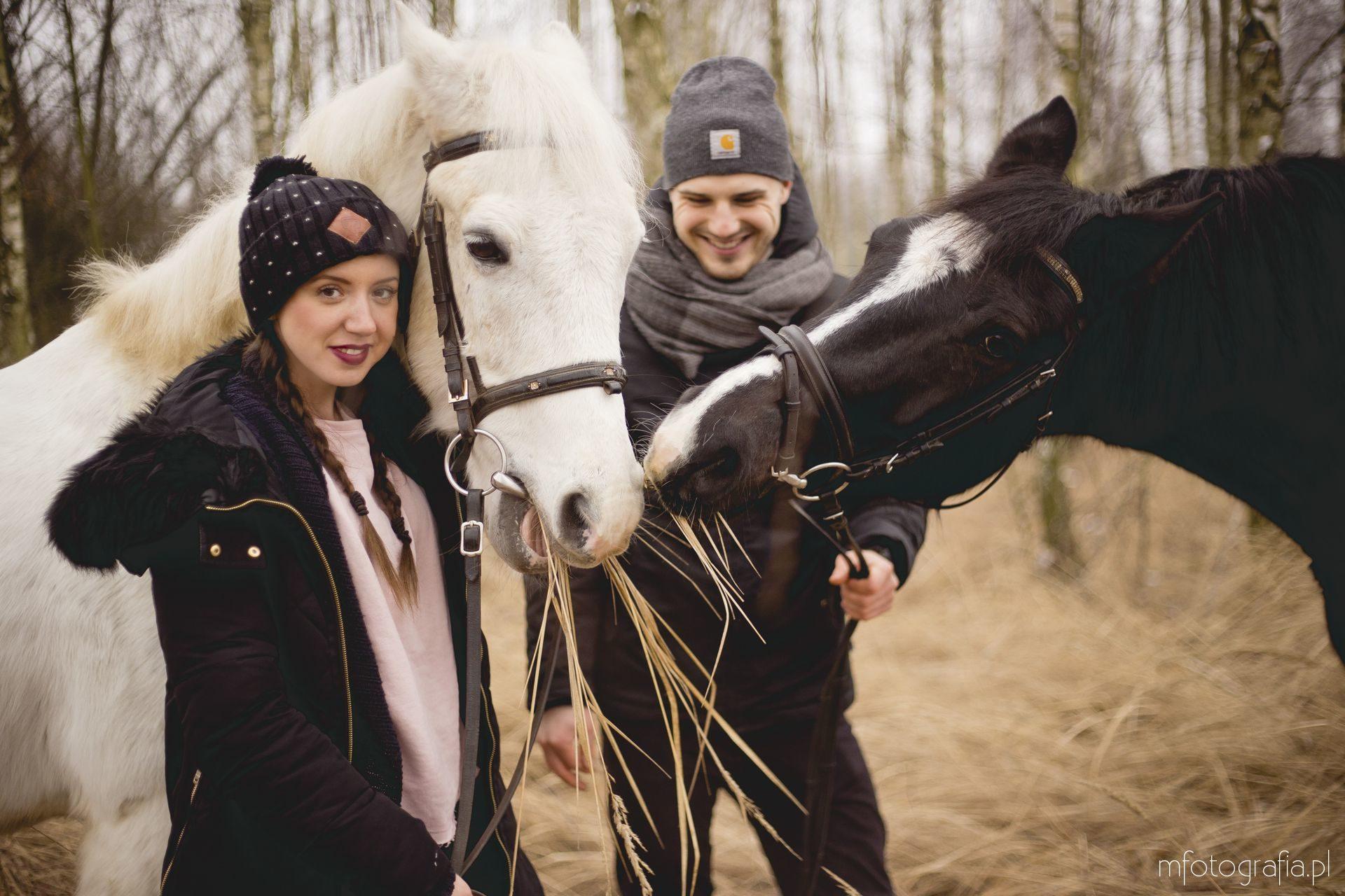 sesja zakochanych z końmi