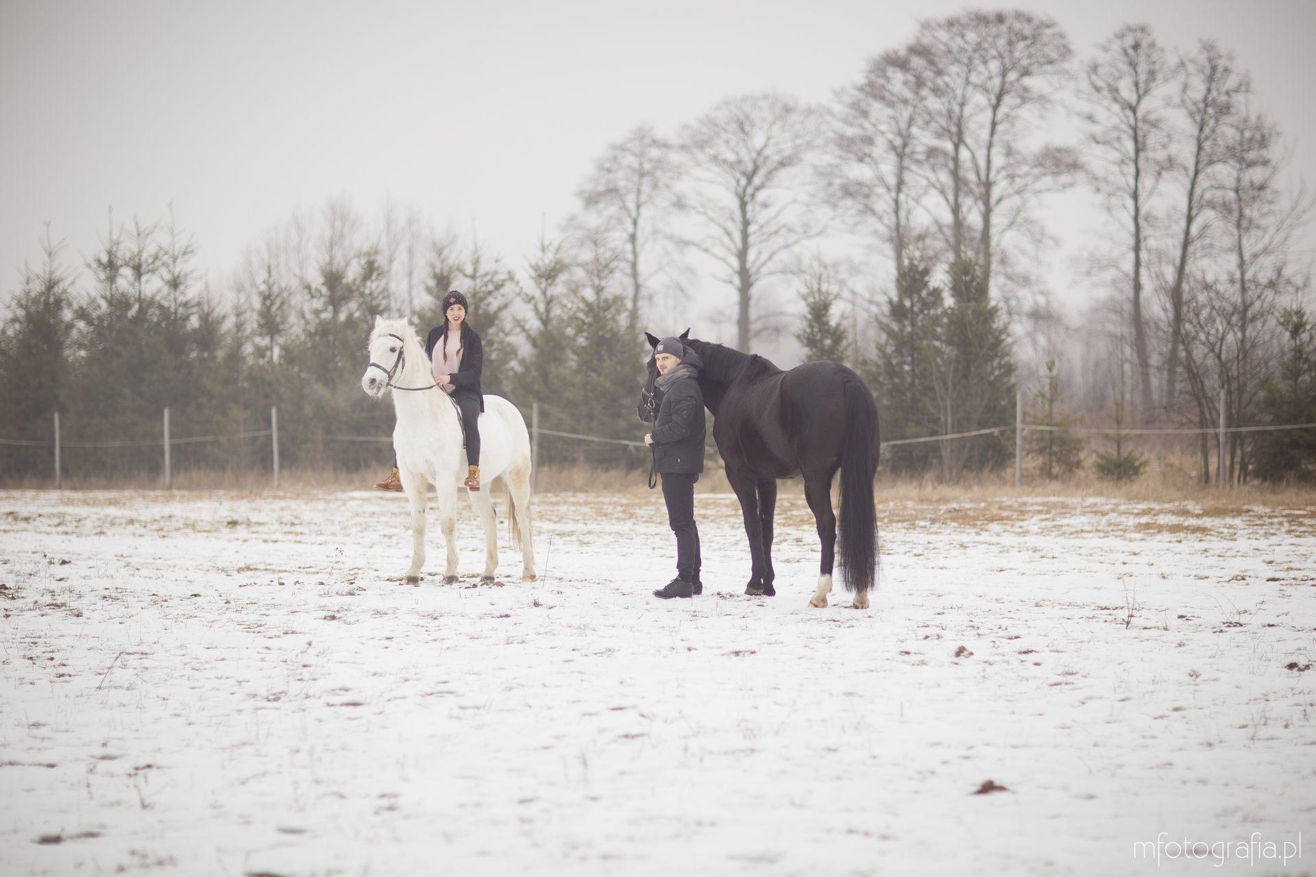 sesja zakochanych zimą koń