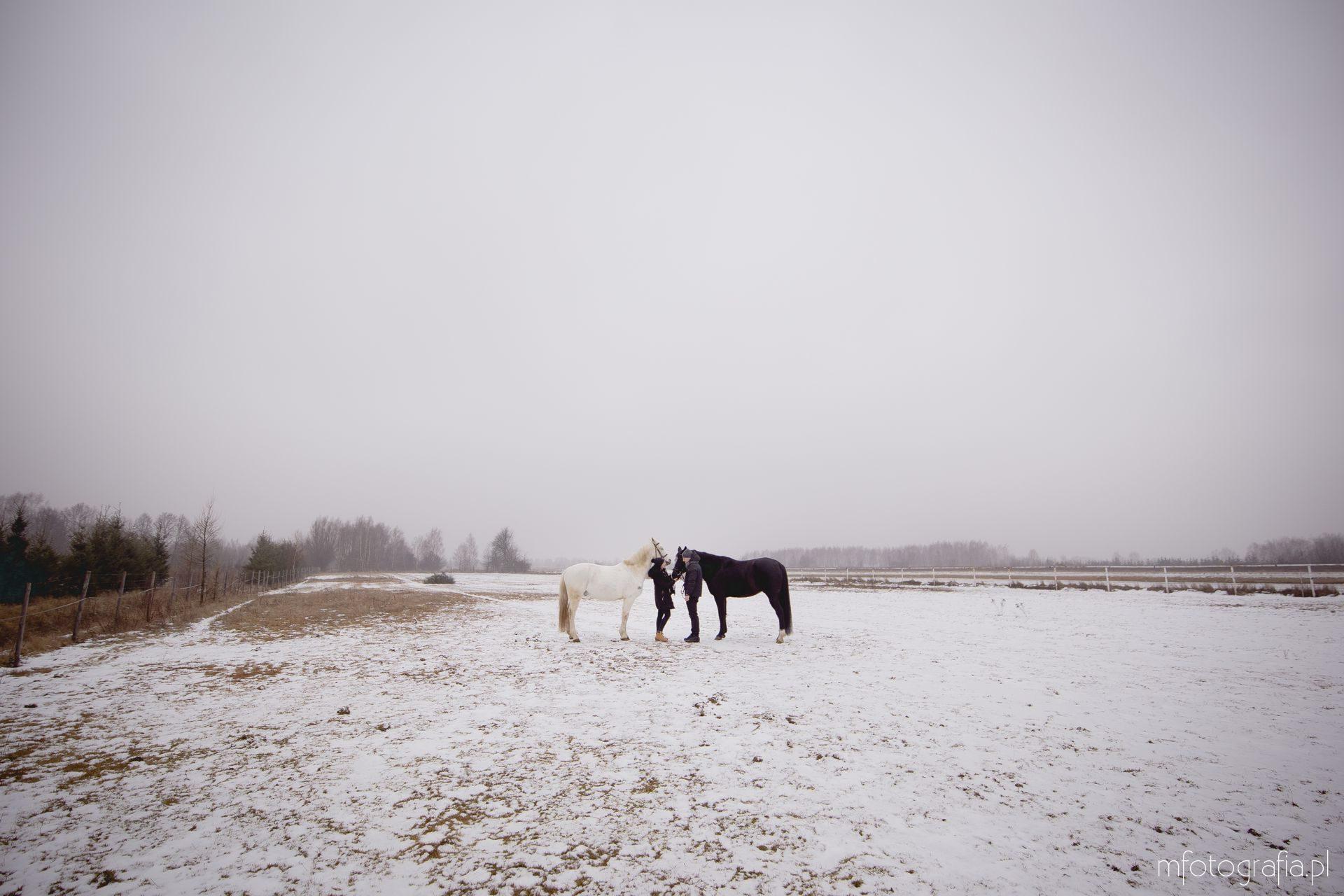 zimowa sesja zakochanych
