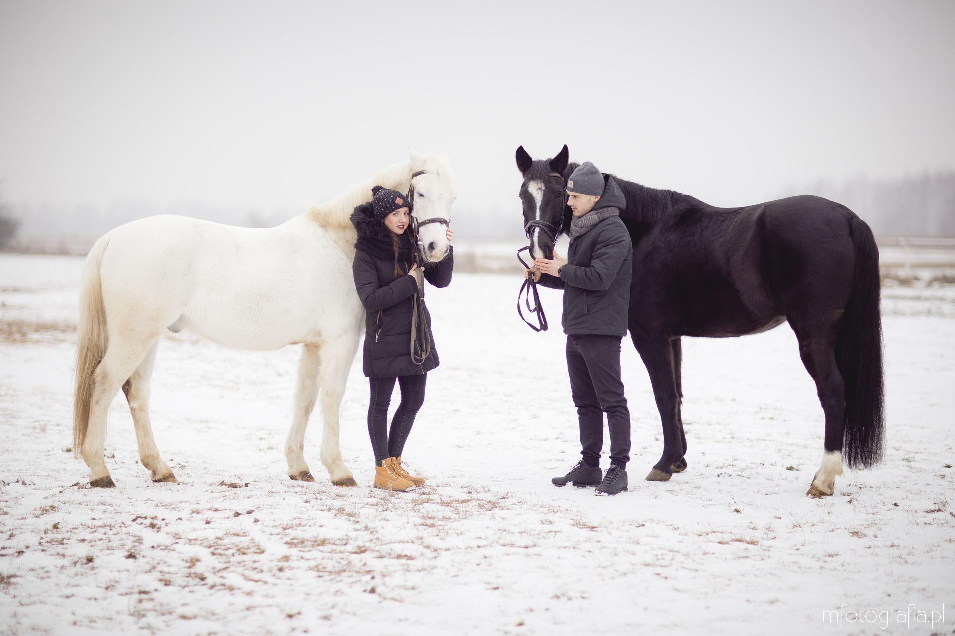 zimowe zdjęcia pary zimą z końmi
